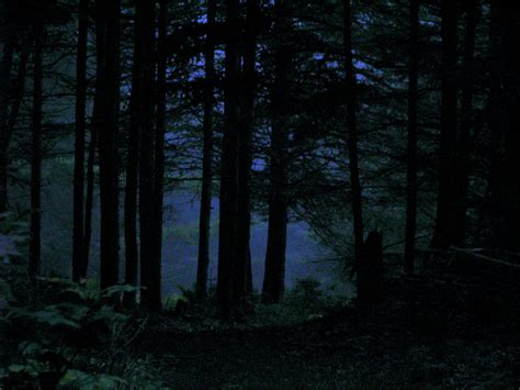 black station ambient creepy horror a nighttime woods walk by deepwoods photo weather