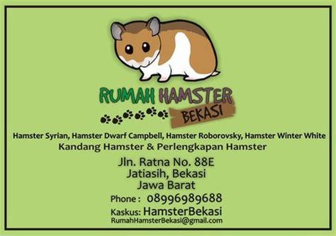 Tempat Makan Hamster terjual rumah hamster bekasi tempat makan minum