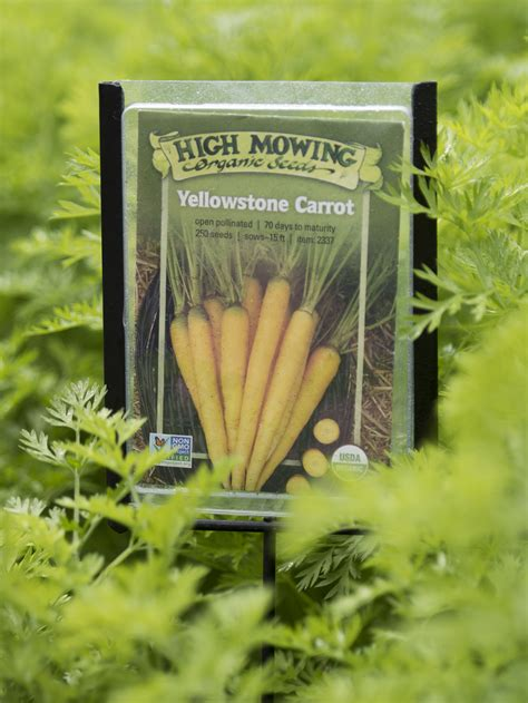 vegetable garden markers seed packet markers set