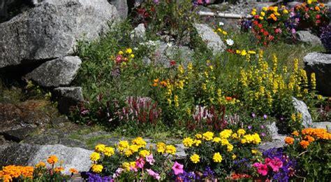 Superbe Amenager Jardin En Pente #7: 029E017005089969-c1-photo-oYToxOntzOjE6InciO2k6NjcwO30%3D-amenager-un-jardin-en-rocaille.jpg