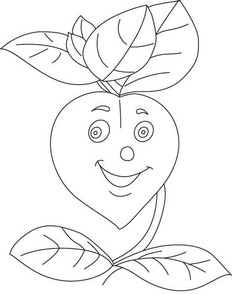 herb garden coloring page herb garden coloring page herb coloring pages coloring pages