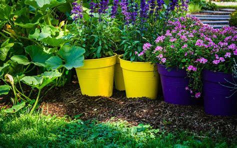 vendita vasi in plastica vasi in plastica mogliano veneto agricenter pistollato