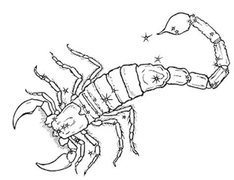 verifica affinit 224 astrologica di coppia segno scorpione