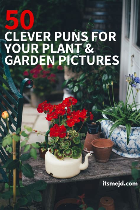 funny plant  garden puns    clever