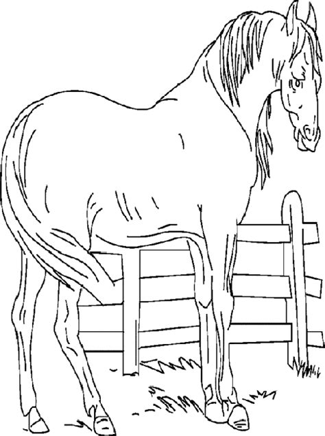coloring page animals farm farm animals coloring pages coloringpages1001 com