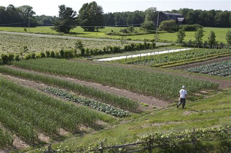 Family Farm And Garden Many La by How To Make A Living From A 1 5 Acre Market Garden