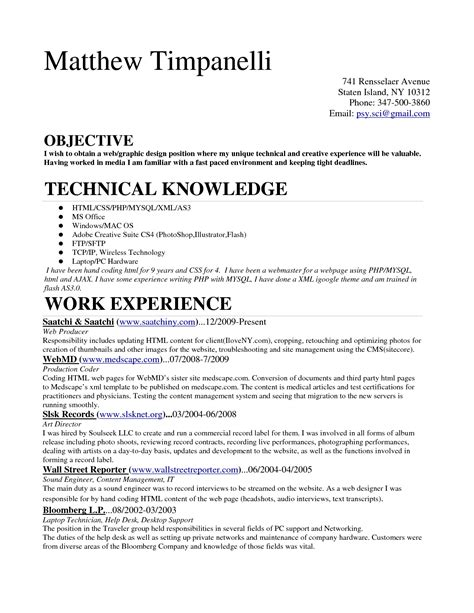 coding best solutions auditor sle resume sle systems analyst resume