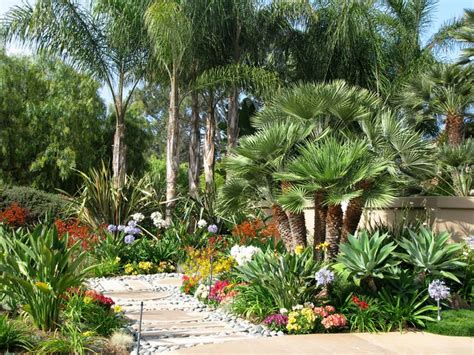 Landscape Designer Salary San Diego Lush Desert Tropical Landscaping With Lots Of Color And