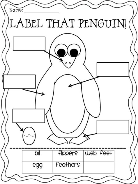 for the of grade and plentiful penguin