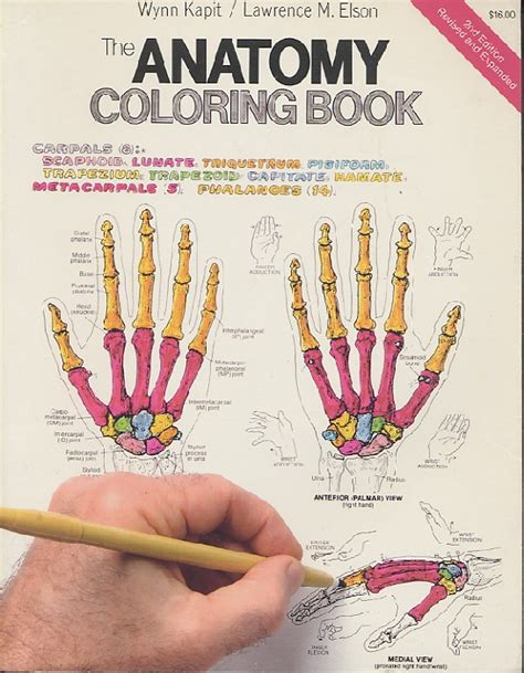 anatomy coloring book 2nd edition the anatomy coloring book 2nd edition revised and expanded