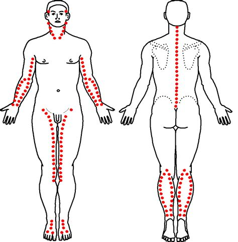 test medicina 2015 2016 scoliosi esercizi correttivi ginnastica posturale