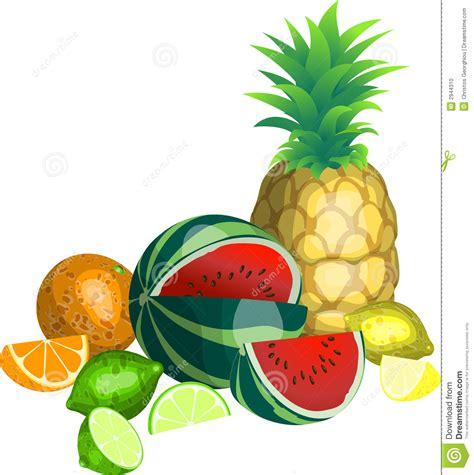 frutta clipart frutta tropicale illustrazione vettoriale illustrazione