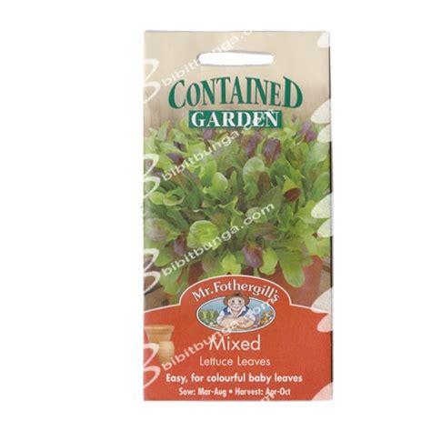 Benih Selada Dacosta New Day Seed 1 Gram benih mixed lettuce green khusus pot 1200 biji mr