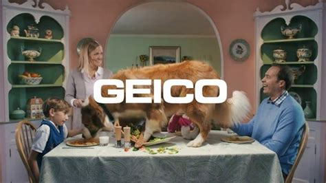 geico commercial couple new style for 2016 2017 geico spy mom commercial its what you do geico geico