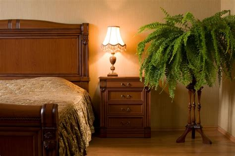 feng shui plants in bedroom feng shui bedroom exles slideshow