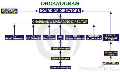 organogram template powerpoint organogram