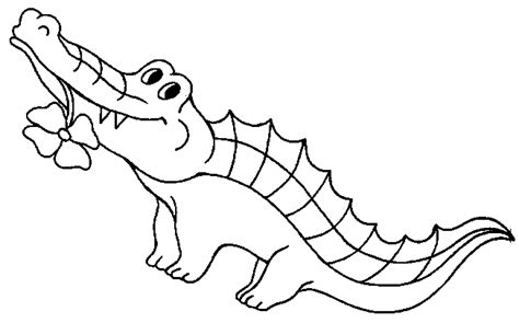 template of crocodile free printable crocodile coloring pages for
