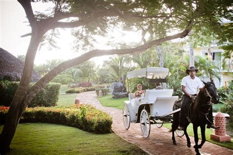 Wedding At Excellence Punta Cana by 57 Best Excellence Punta Cana Weddings Images On
