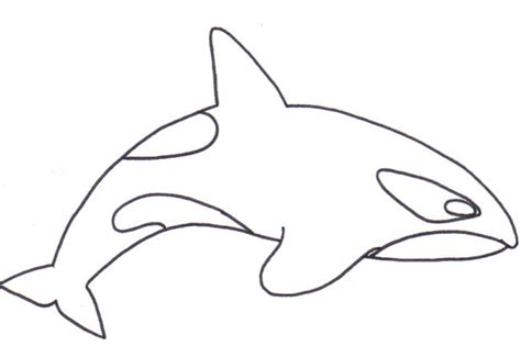 Killer Whale Coloring Pages printable whale coloring page