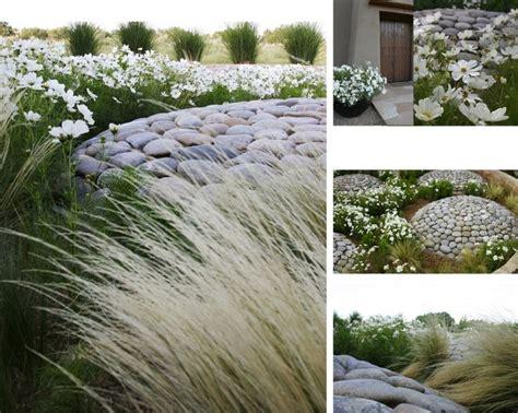 63 best arid landscape images on pinterest dry garden