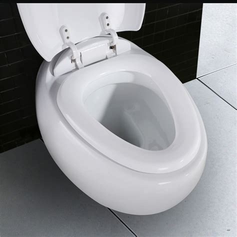 toilettensitz bidet wc toilette mit softclose toilettensitz wandh 228 nge