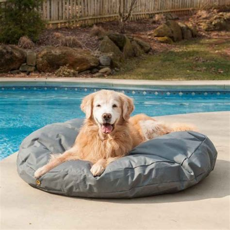 outside dog beds snoozer pool patio dog bed indoor outdoor 10 colors