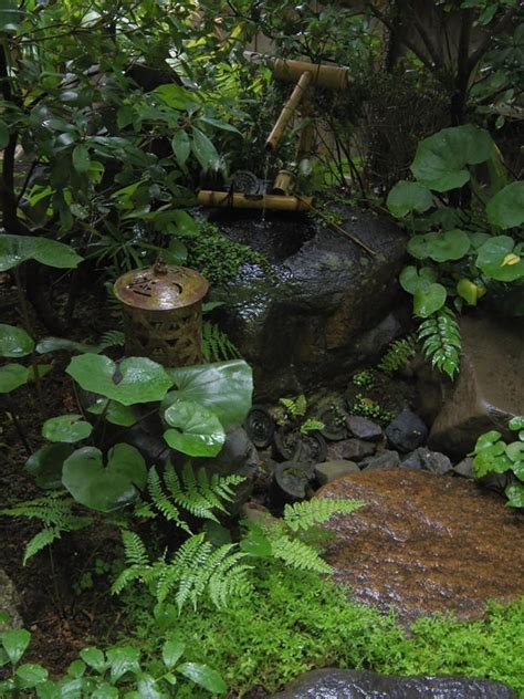 zen water garden 25 best ideas about japanese garden landscape on