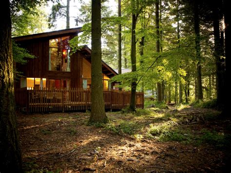 Canadian Home Design Blogs a forest holiday with a 3 year old and a 1 year old