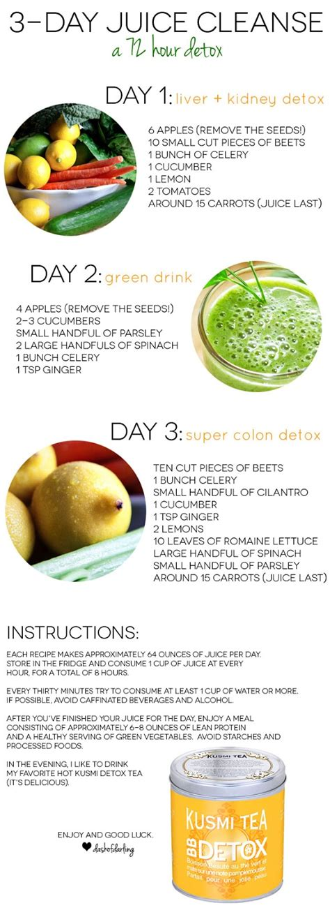 Liquid Detox Diet 1 Day by Three Day Juice Cleanse Dash Of