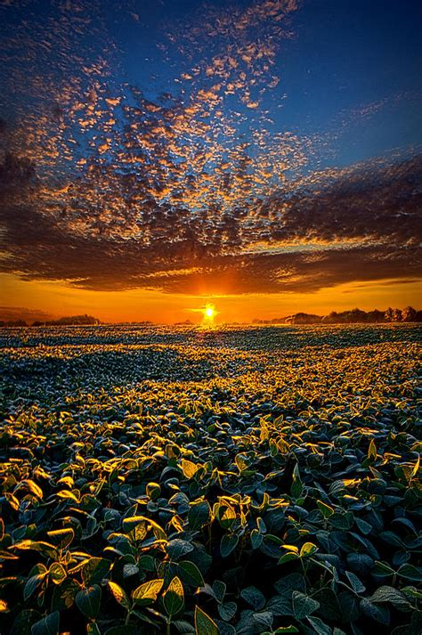 Own A Of Paradise by My Own Of Paradise Photograph By Phil Koch
