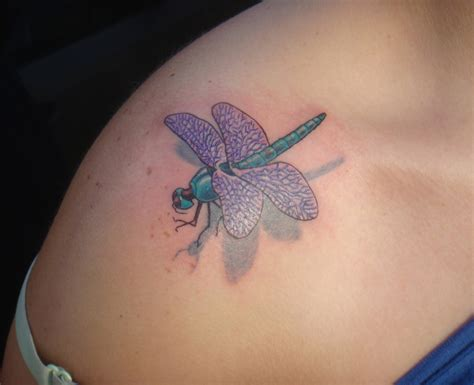 3d dolphin dragonfly pictures tattoos for men and women