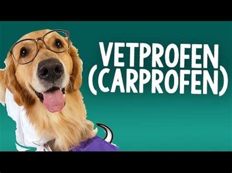 vetprofen for dogs caplets