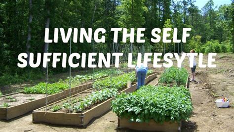 triyae self sufficient backyard farm various