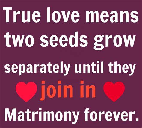 images of love romantic quotes true love quotes for him quotesgram