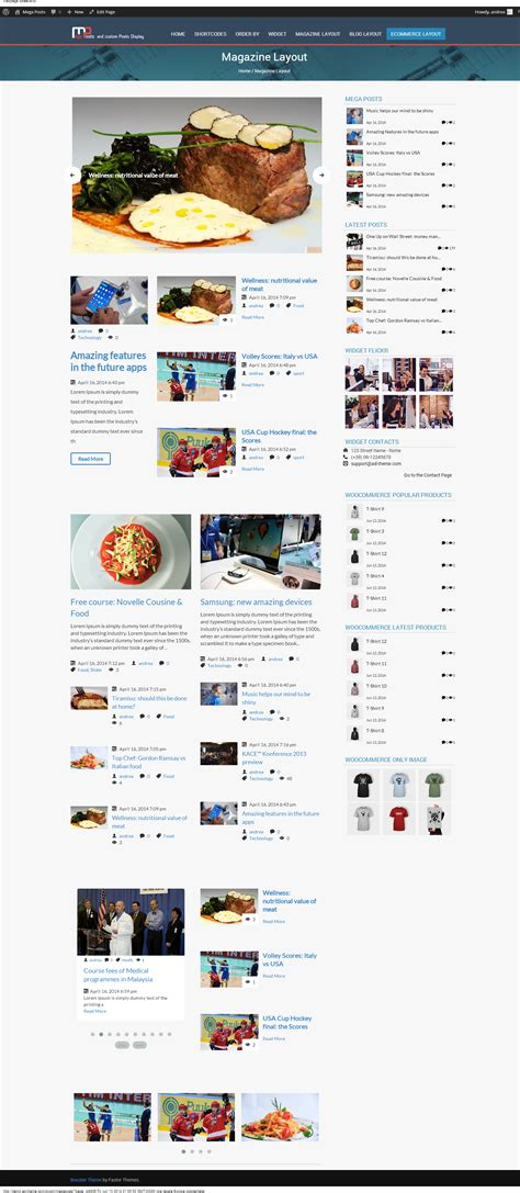 layout of a blog post mega posts and custom posts display wp plugin by ad theme