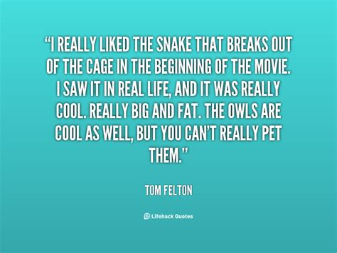 phrases quotes snake quotes sayings quotesgram