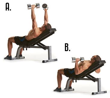 exercises with dumbbells and bench wotm 09 2013 ignite chest shoulder back growth with
