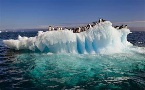 imagenes de paisajes frios blog de sociales 1 186 eso paisajes fr 205 os clima polar y de