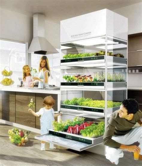 Indoor Kitchen Garden Ideas | indoor garden ideas