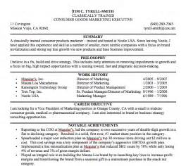 resume exle 47 professional summary exles exles of a career summary professional