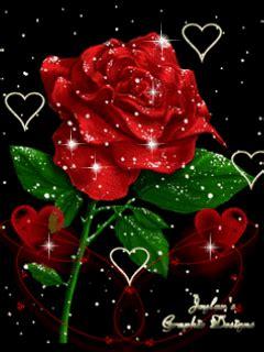 wallpaper rose bergerak kartka r 243 życzka e kartki net pl