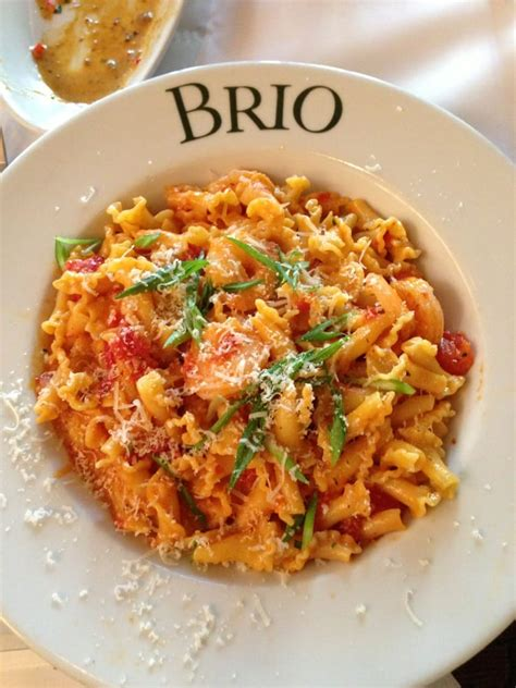brio restaurant miami brio tuscan grille 189 photos 193 reviews italian