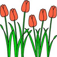 dutch mill bulb and flower sale orders due march 11th