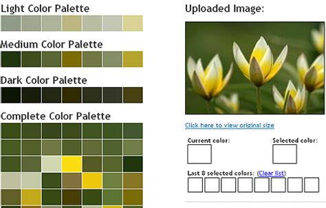 perfect color combinations 50 best free tools to create perfect color combinations