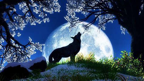 full wolf moon   years resolutions reiki dublin
