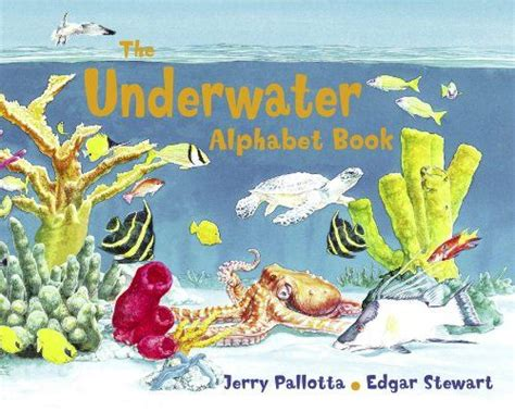 under water activity book 17 best images about theme summer on activities student and literacy centers