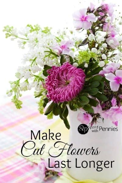make cut flowers last longer with these simple tips