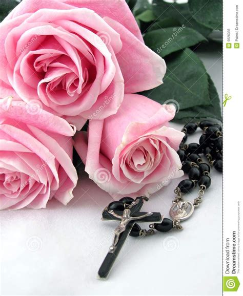 pink rosary rosary cross and pink roses stock photo image 9826388