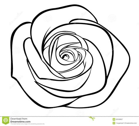 rose tattoo clipart outline clipart clipart suggest