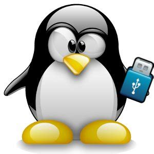 usb linux how to create a live linux usb stick beginner linux tutorial